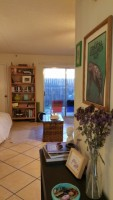 Sublet cute studio with backyard in North Campus (May 20-Aug 4)