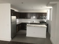 Spacious private bedroom/bathroom in 2BR apt; modern kitchen; in-unit laundry - Hyde Park / Near UChicago
