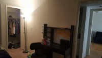 Apt available 5 mins from UCLA