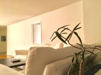 Room Available in Spacious 4 Bedroom Apartment Near Red Line