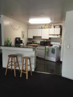 Spring/Summer Sublet on South U