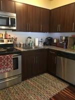 Downtown One Bedroom Apartment - New Price