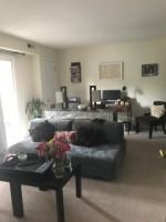 1 Bedroom Apartment in Ivy Gardens