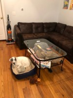 Huge bedroom available fully furnished