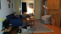 Beautiful Downtown Summer Sublet
