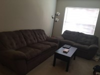 2 sofa, coffee table, tree lamp