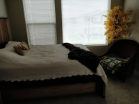Modern Timbervine Home! 2 Bedrooms 4 Rent.