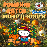 Pumpkin Patch 2019 Team Members
