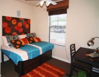 1BD/1BATH in 4 BD/BATH Apartment in Arlington for rent