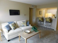 Brant New 1B/1B apartment for rent