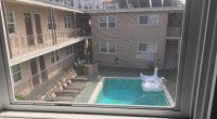 Westwood UCLA Female Roommate Needed Shared One Bedroom Furnished avail March 1st.