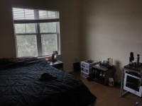Forum Sublease First month rent paid