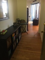 Beautiful Junior 1 bed/1 bath Available for Sublease Dec. 1-April 30th with Option to Renew