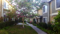 $1075 single room and shared bath for rent in 3 bedroom upgraded townhouse (Carmel Valley/Del Mar)
