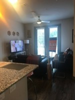 Sublet for female at The Arlie