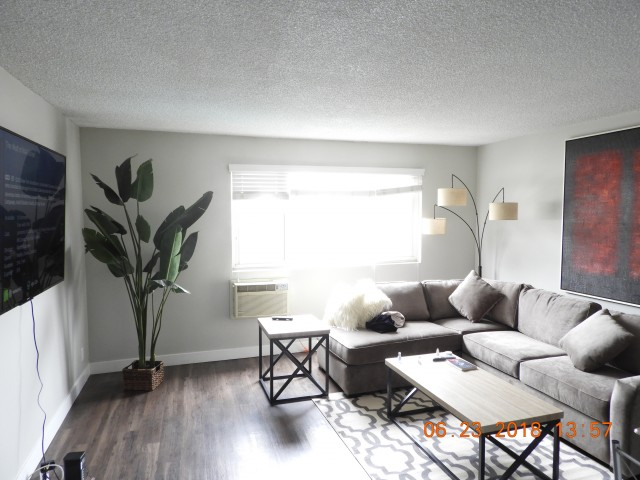 FULLY FURNISHED APARTMENT NEAR UCLA + UP TO 400MBPS WiFi INCLUDED FOR THE SCHOOL YEAR!!!