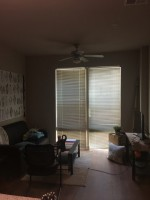 New 1 BR Rental, Free First Month's Rent