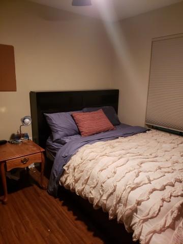 1 Room for Rent in Apartment Close to UT Campus
