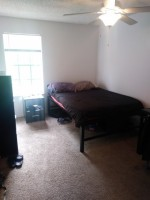 Lexington Crossing Summer Sublet May-August 1/1 in a 3/3