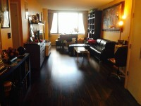 $2450 / 1br - 865ft2 - 1 BEDROOM CONDO FOR RENT IN LUXURY BUILDING (NEWPORT AREA/JERSEY CITY)