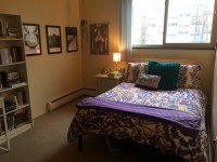 Summer sublet in Kerrytown/Hospital area