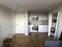 1 MONTH FREE - Harvard Sq - Spacious, renovated 1BR apartment
