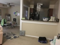 Walk to UNC! One Bedroom Available