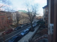 Beautiful 2 BR Duplex Apartment Available in Crown Heights, Brooklyn