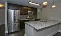 2 bedroom apartment in Adams Morgan 1 month free