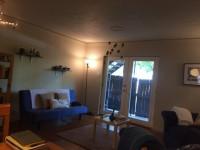 1 Bedroom for Rent in 2 Bedroom Apartment Near UNT