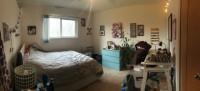 Single Bedroom Summer Sublet