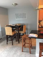 Luxury South Loop 1BR Apartment with Lake View