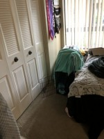 Looking for a roommate for the second room