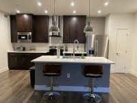 Luxury Apt Room for Rent