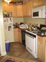 Furnished Pet Friendly Apartment Close to Campus