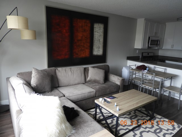 STUNNING MALE STUDENT APARTMENT ACROSS THE STREET FROM UCLA FURNISHED ON  GAYLEY!!!