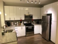 Luxury Fully Furnished 1 BR 1 BA Apartment