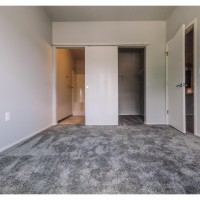 1 Bedroom 1 Bathroom Apartment (Walking Distance MSU)