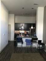 Theory Raleigh Sublet