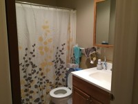 Scottsville 2 bed 1 bath sublet