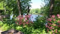 Gardener / Horticulturalist