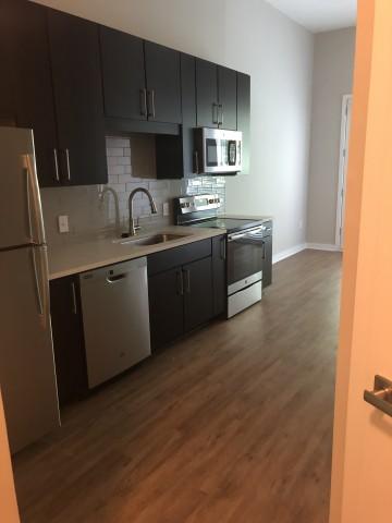 1 BR/ 1 BA luxurious apartment