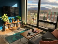 Lark on Main 5th Floor Apartment for Two, June 1 - July 31
