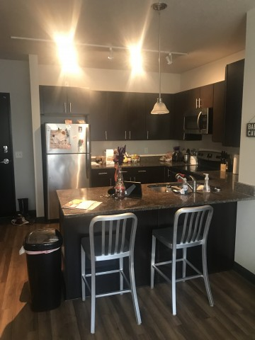 Two person/Single bedroom in two bedroom apt. with private bathroom