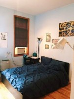 Short-term or long-term sublet in Bushwick starting September 1
