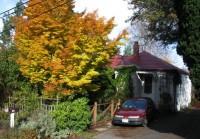 Studio apartment, $1200, Maple Leaf, quiet owner-occupied home.  Corgi-friendly.
