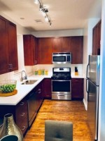 4 Bed 2 Bath luxury apt by UIC and Rush, in-unit w/d, garage parking