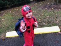 Super fun babysitting job in Chevy Chase