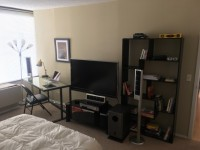 Downtown Summer Sublet: Furnished Master Bedroom at Millennium Park Plaza - June to September