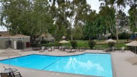 1 Bedroom for rent in a Townhouse near UCSD